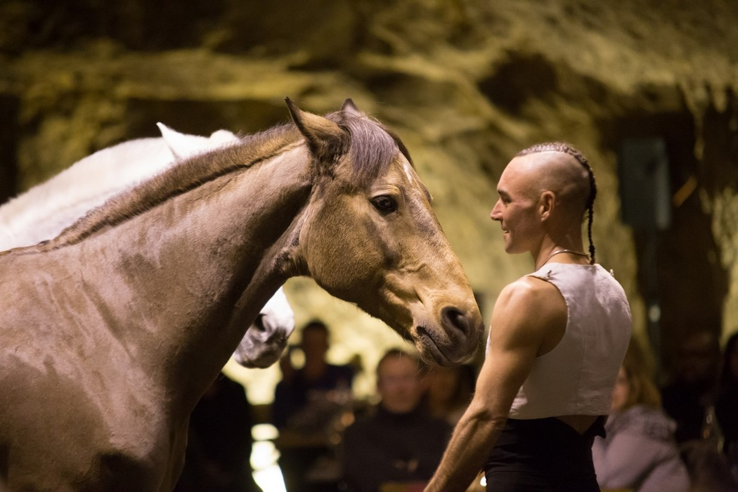 SPECTACLE EQUESTRE ©vinovalley